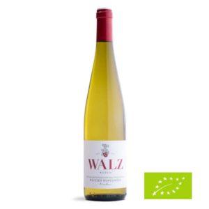 Heitersheimer-Maltesergarten-Weisser-Burgunder-trocken-Biowein-Weingut-Walz-Heitersheim