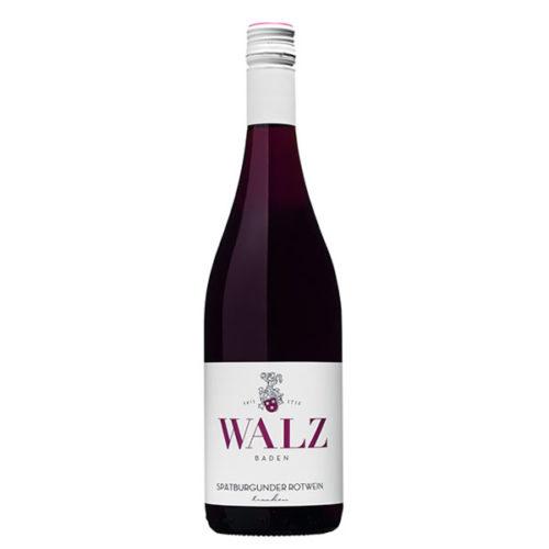 Spätburgunder Rotwein trocken Weingut Walz