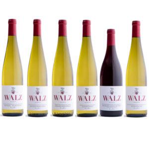 Probesortiment Lagenweine Weingut Josef Walz Heitersheim