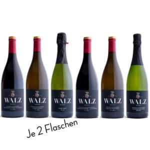 Probesortiment Flaggschiffwein - Weingut Josef Walz - Heitersheim - Markgräflerland