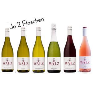 Probesortiment Gutswein - Weingut Josef Walz - Heitersheim - Markgräflerland