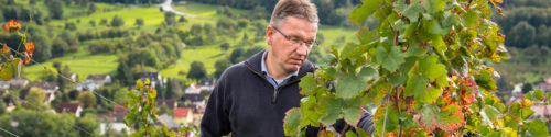 Thomas Walz - Weingut Josef Walz - Heitersheim