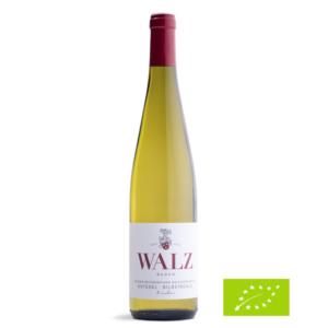 Heitersheimer-Maltesergarten-Gutedel-Bildstöckle-trocken-Biowein-Weingut Josef Walz-Heitersheim Kopie