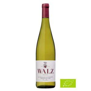 Heitersheimer-Maltesergarten-Muskateller-trocken-Biowein-Weingut-Walz